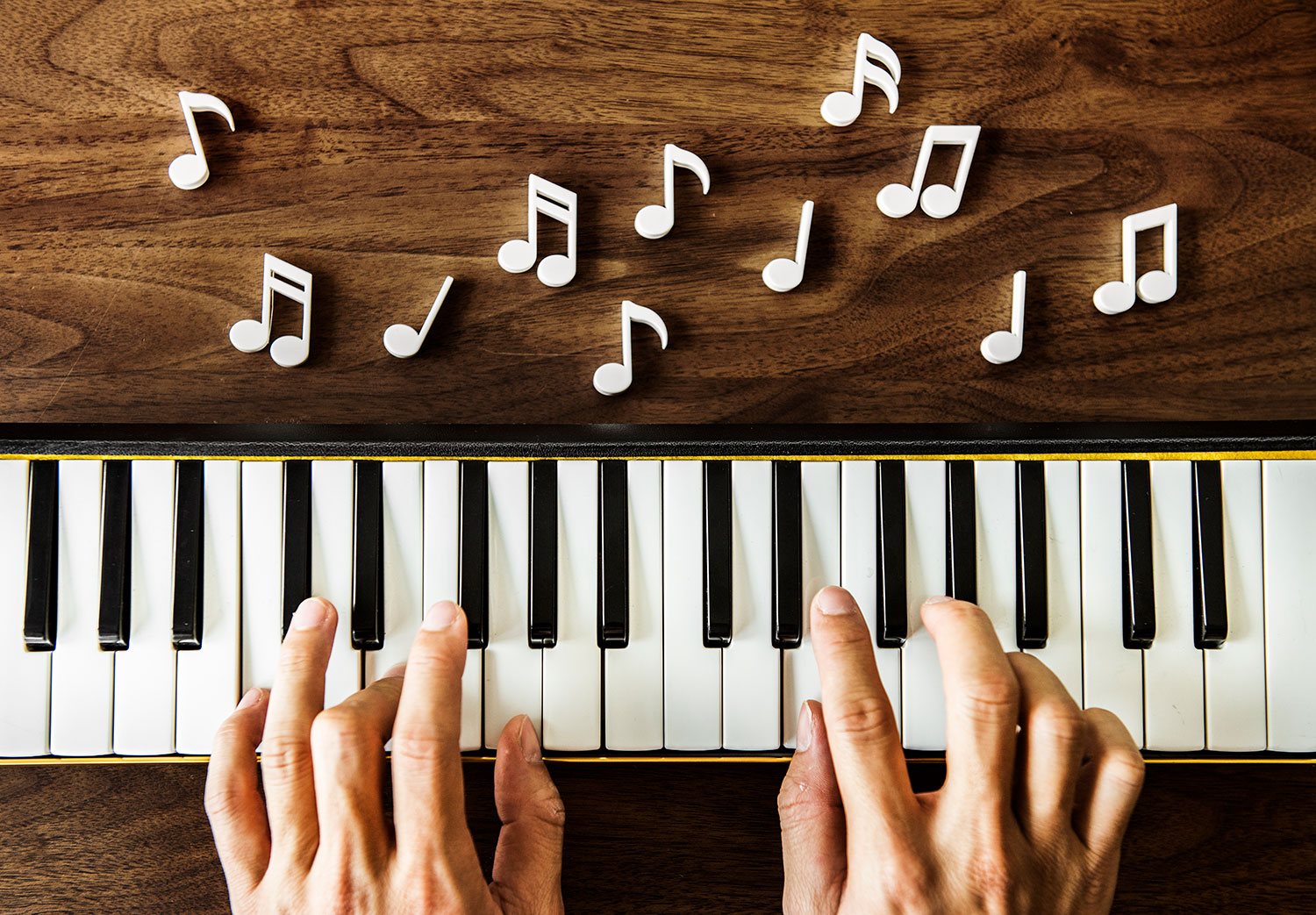 envato elements adds royalty free music and sound effects